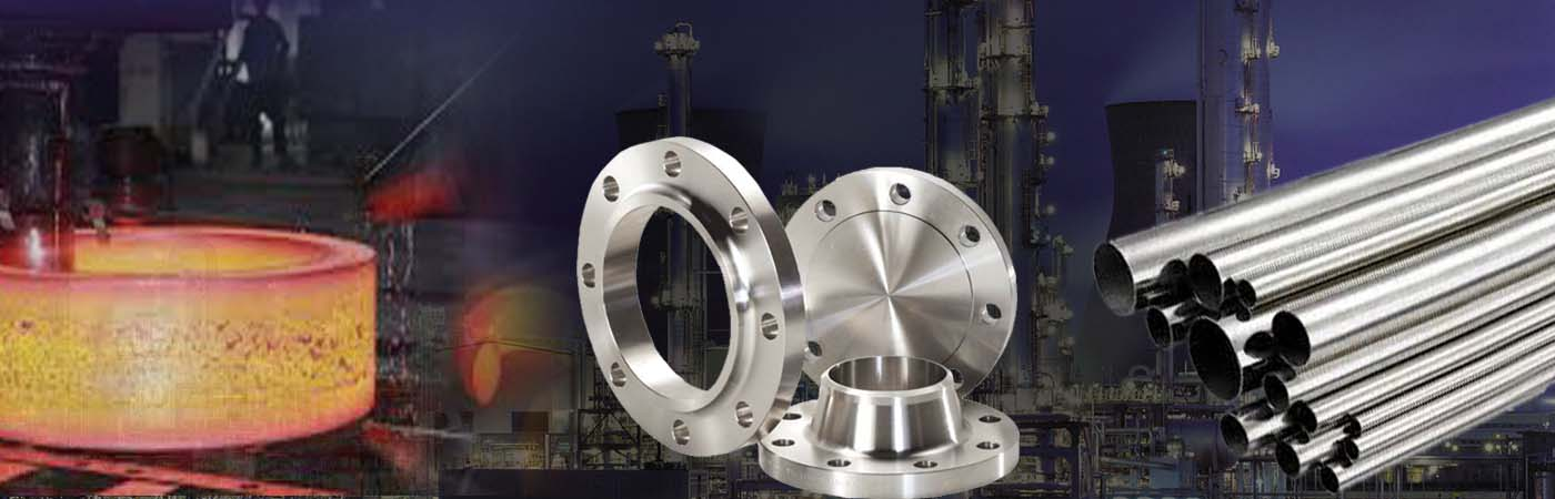MS Flanges Manufacturers